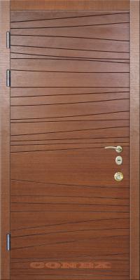 Двери  стальные Conex модель 79 изображение