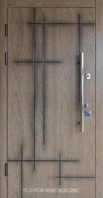 Двери  стальные Conex модель 69 изображение