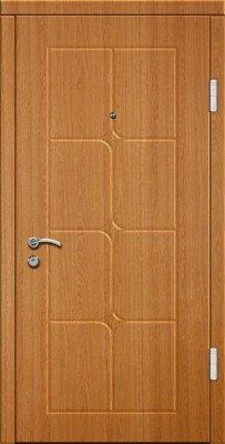 Входные двери Эконом 60  Ф100 изображение