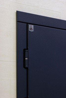 Стальные двери Саган изображение 4