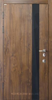Двери  стальные Conex модель 52 изображение
