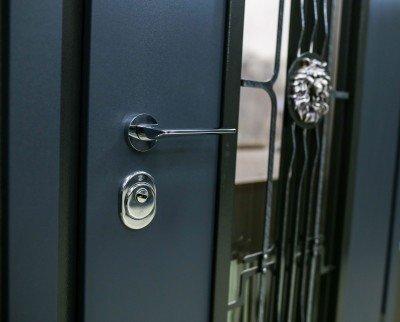 """Уличные двери Straj модель """"Decor Line"""" изображение 4"""