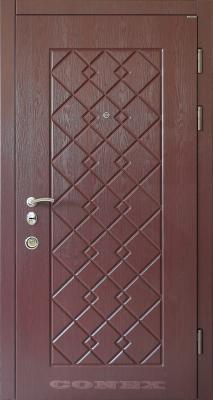 Двери  стальные Conex модель 82 изображение