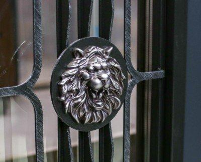 """Уличные двери Straj модель """"Decor Line"""" изображение 3"""
