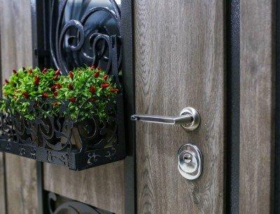 """Уличные двери Straj модель """"Decor Line"""" изображение"""