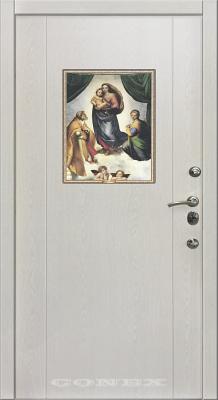 Двери  стальные Conex модель 64 изображение