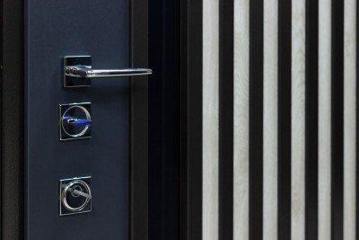 Входные двери Страж ID 925250 изображение 2