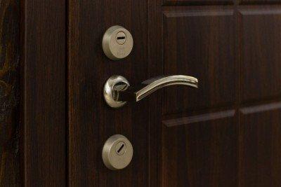 Двери Феран Стандарт 100 изображение